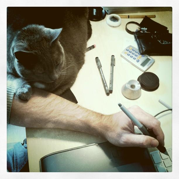 http://f.cl.ly/items/3M1p2S3j2v071S1S2W20/F-cat.jpg